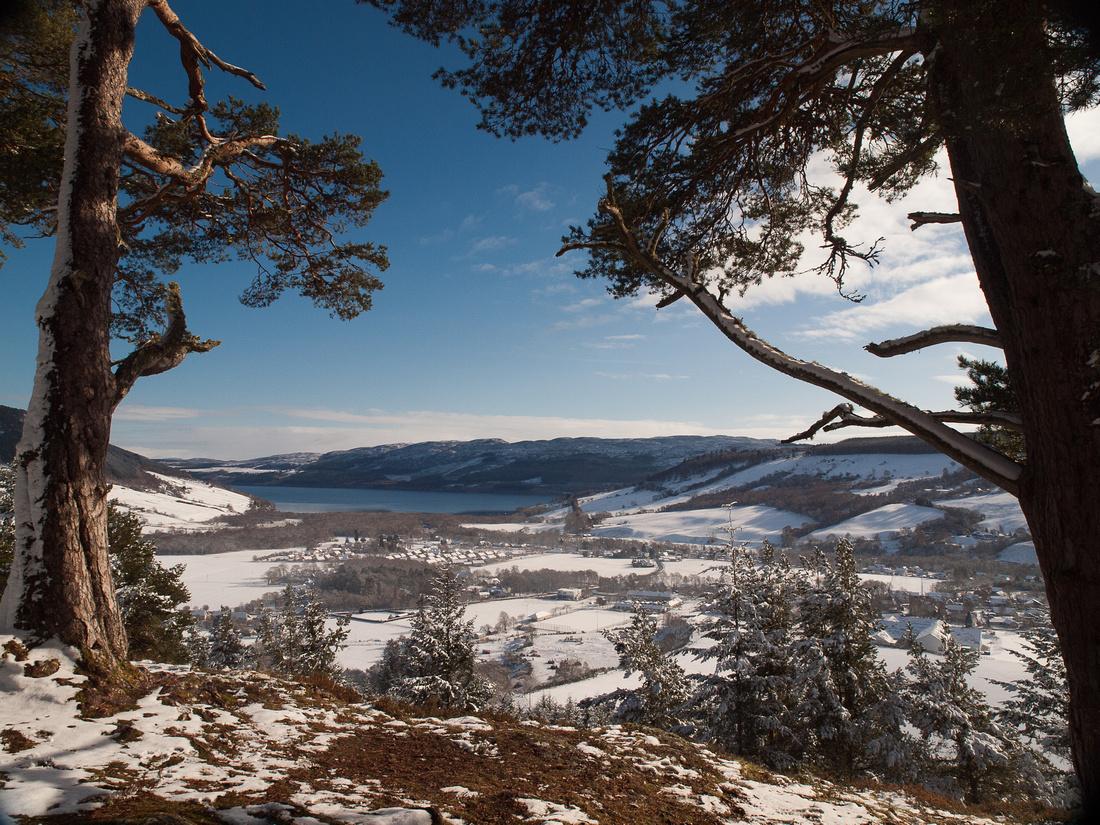 Snowy Drumnadrochit