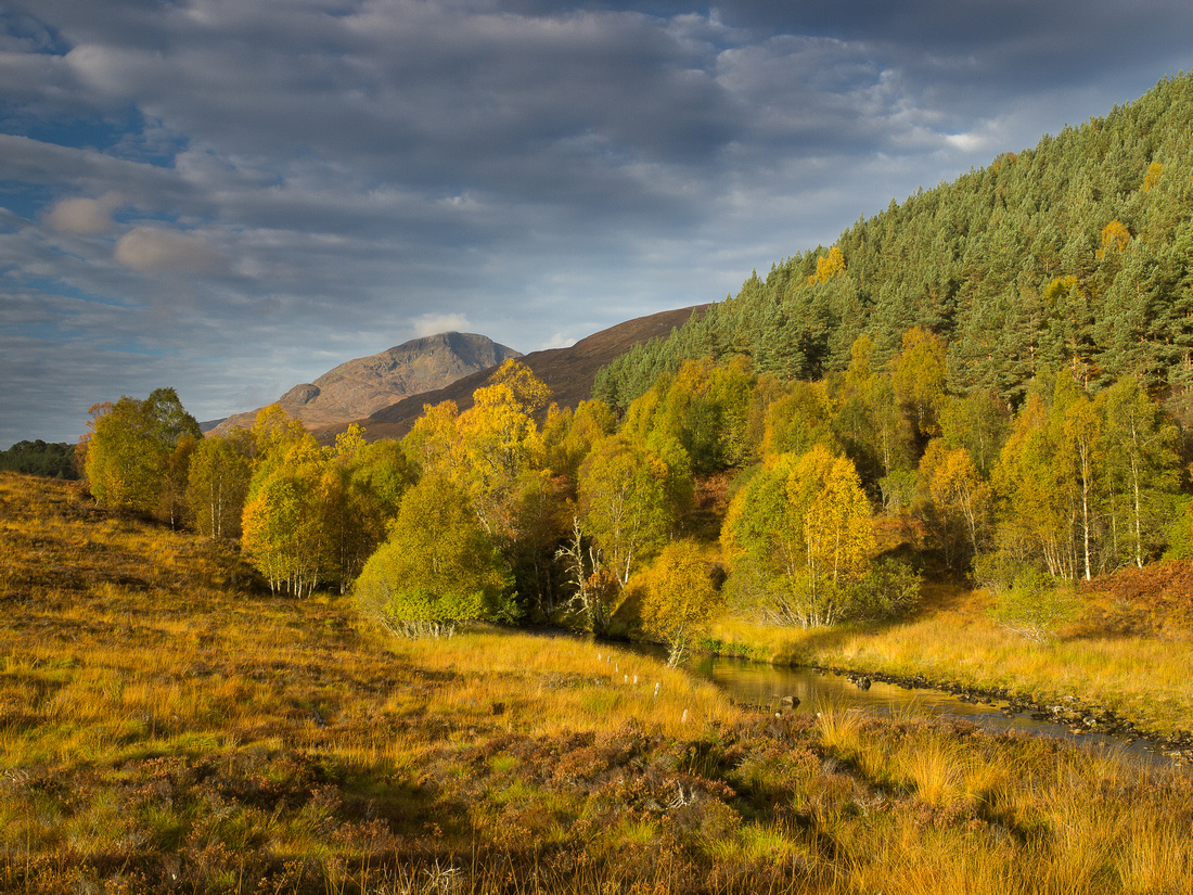 Glen Affric Gold
